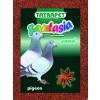 Grit pre holuby červený 2kg Fantasia