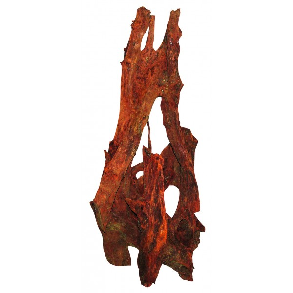 Akváriový koreň Mangrovewood 80-110cm