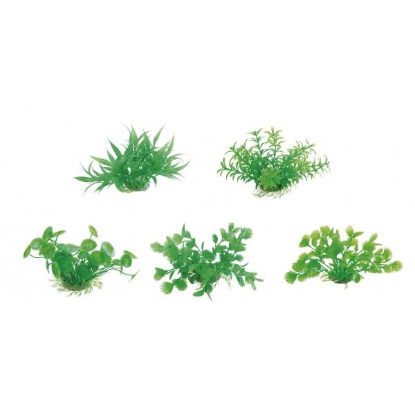 Rastlina do akvária 10-12cm Flipper