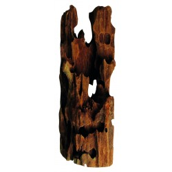 Akváriový koreň Mangrowe Pookaholes 35-45cm