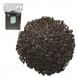 Slnečnica čierna 2,5kg Fantasia